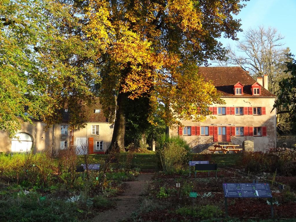2017-10-25 Matin d'automne - 10 (c) MM-web