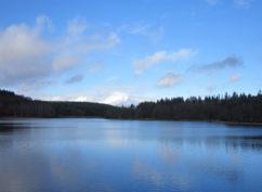 Randonnée dessin naturaliste : Le Lac de Saint-Agnan se dévoile sous vos crayons