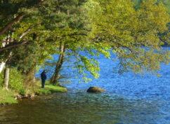 Balade nature «Découverte d'un paysage morvandiau