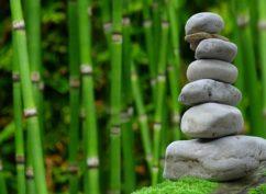 Formation au massage Shiatsu Bien Être