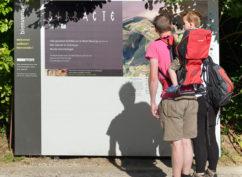 Grande visite nature à Bibracte : durée 3h, tout public – bons marcheurs