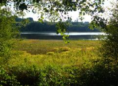 Balade au lac de Saint-Agnan»le sentier du domaine des Grands Prés» ENS2020