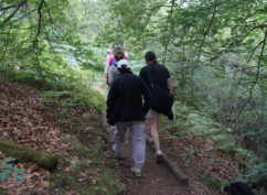 ENS 2021 – Balade nature : «Entre bois et rivière : la boucle de la Motte-Ternant»