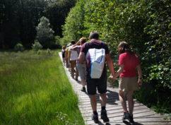 [Balade nature] : Fragile tourbière, à la découverte des Sources de l'Yonne