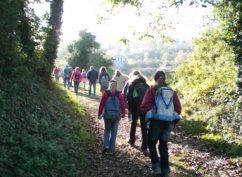 La Marche Historique à Vézelay