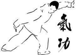 Stage de Qiqong et Taichi-Chuan